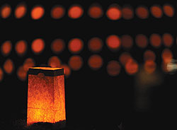 Lighting Luminarias
